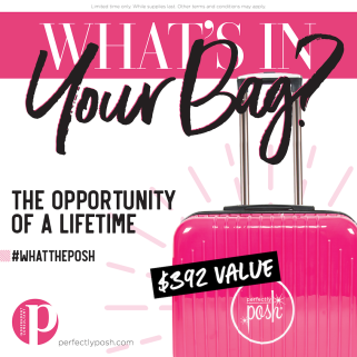 WhatThePosh Starter Kit-FB Consult Logo2